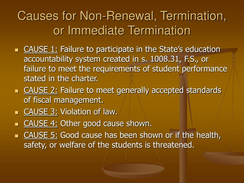 Causes for Non-Renewal, Termination, or Immediate Termination
