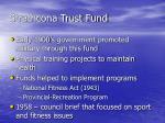 strathcona trust fund