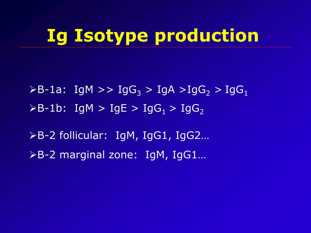 Ig Isotype production