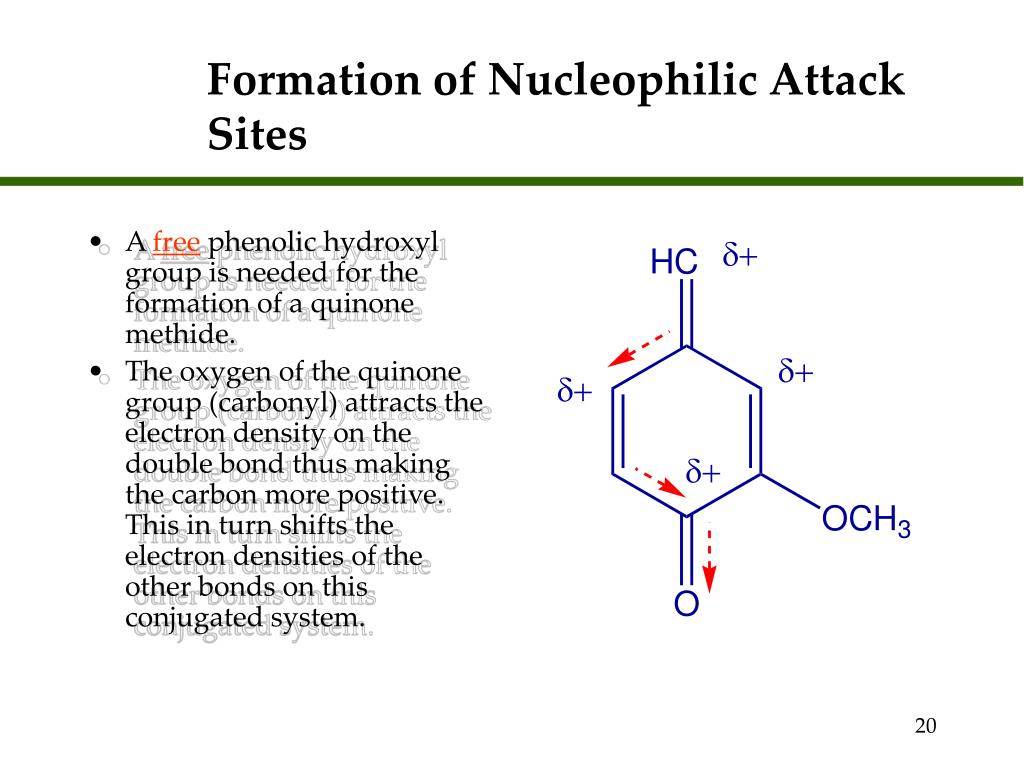 Formation of Nucleophilic Attack Sites