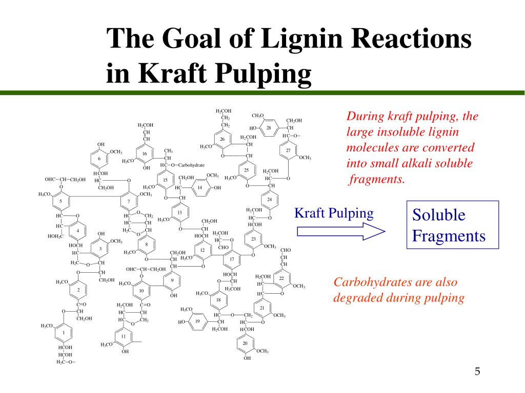 The Goal of Lignin Reactions in Kraft Pulping