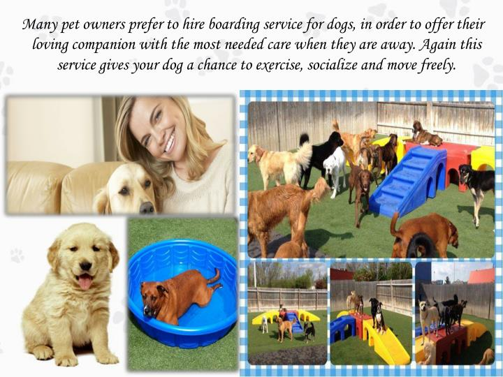 Many pet owners prefer to hire boarding service for dogs, in order to offer their loving companion with the most needed care when they are away. Again this service gives your dog a chance to exercise, socialize and move freely.