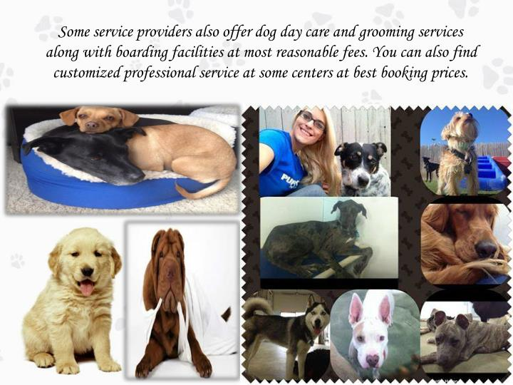 Some service providers also offer dog day care and grooming services along with boarding facilities at most reasonable fees. You can also find customized professional service at some centers at best booking prices.