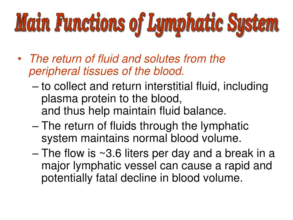 Main Functions of Lymphatic System