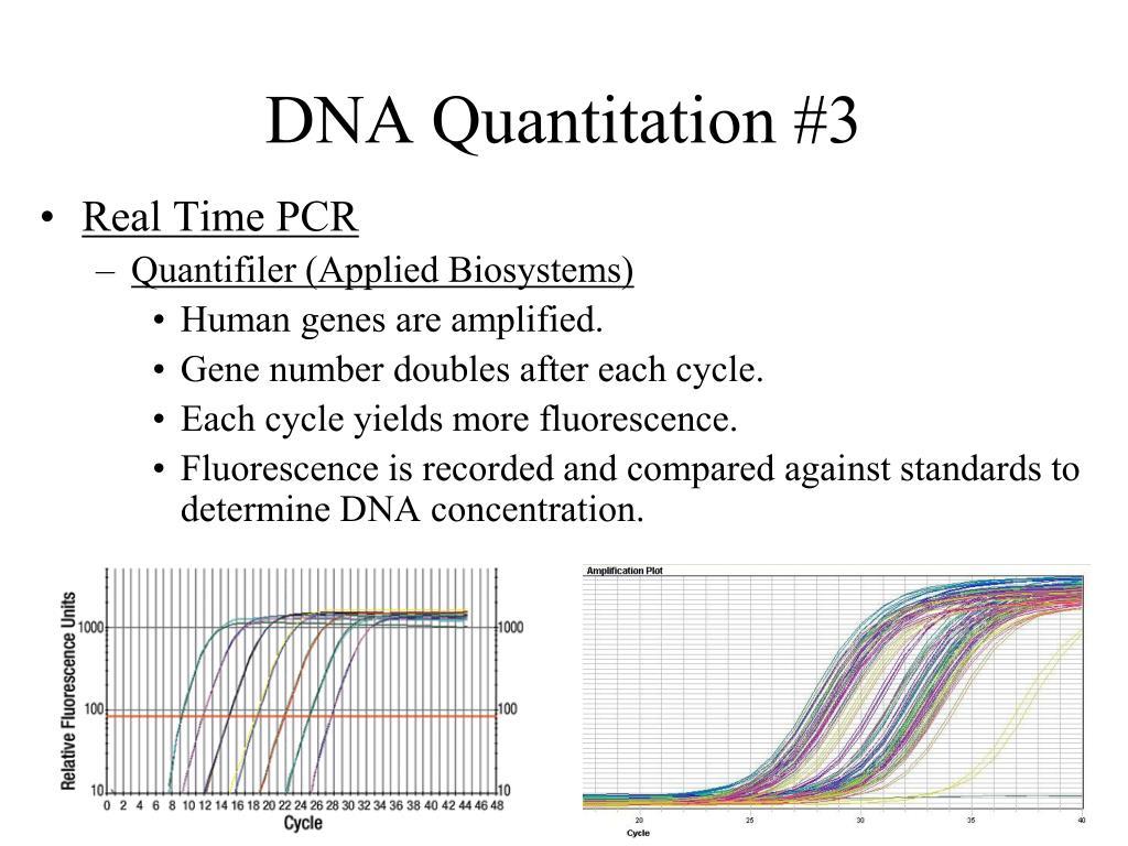 DNA Quantitation #3