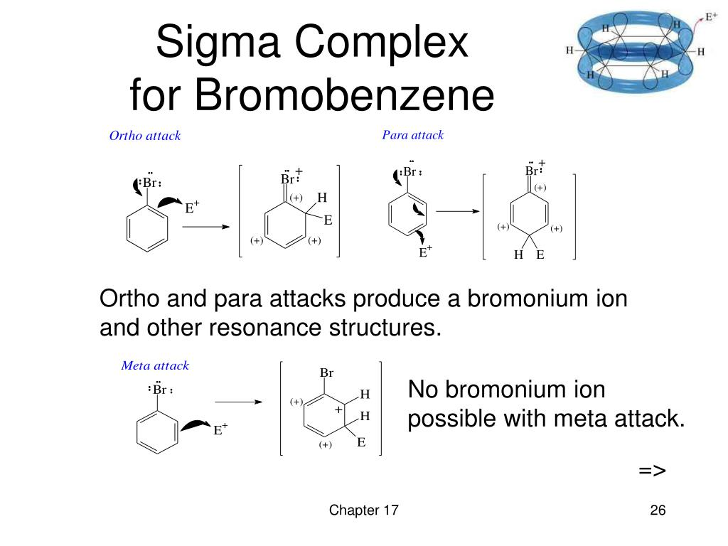 Ortho and para attacks produce a bromonium ion