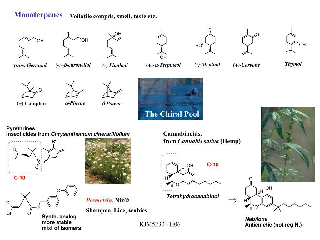 Monoterpenes