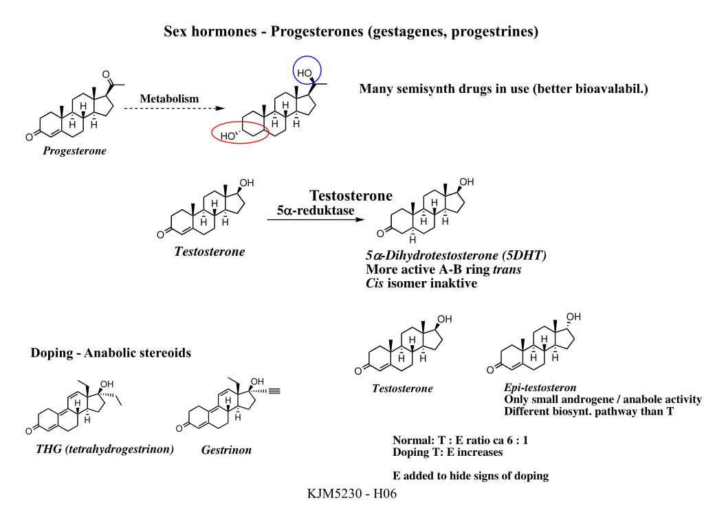 Sex hormones - Progesterones (gestagenes, progestrines)