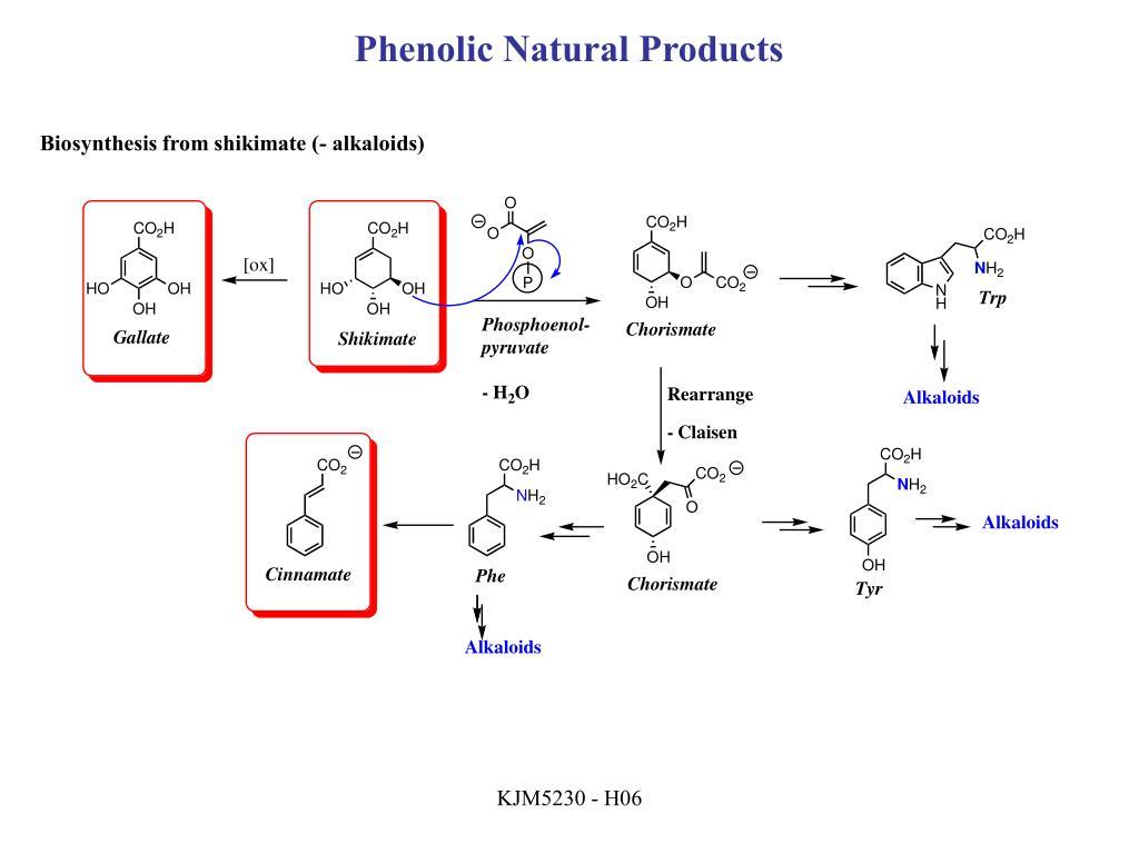 Phenolic Natural Products
