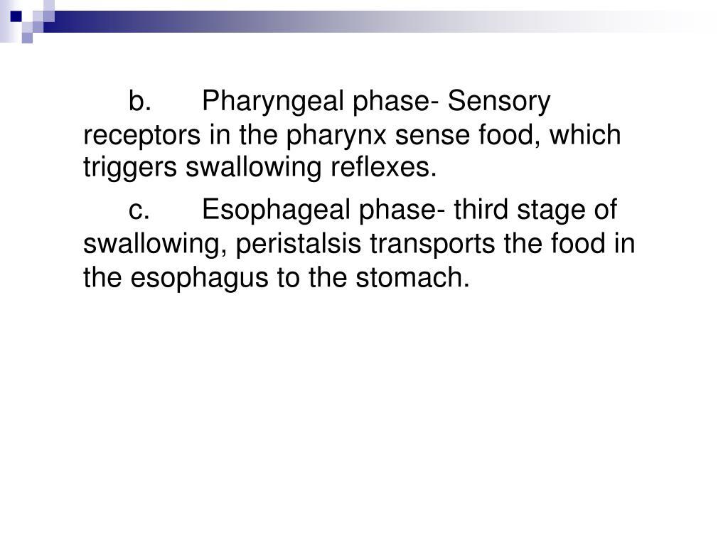 b.Pharyngeal phase- Sensory receptors in the pharynx sense food, which triggers swallowing reflexes.