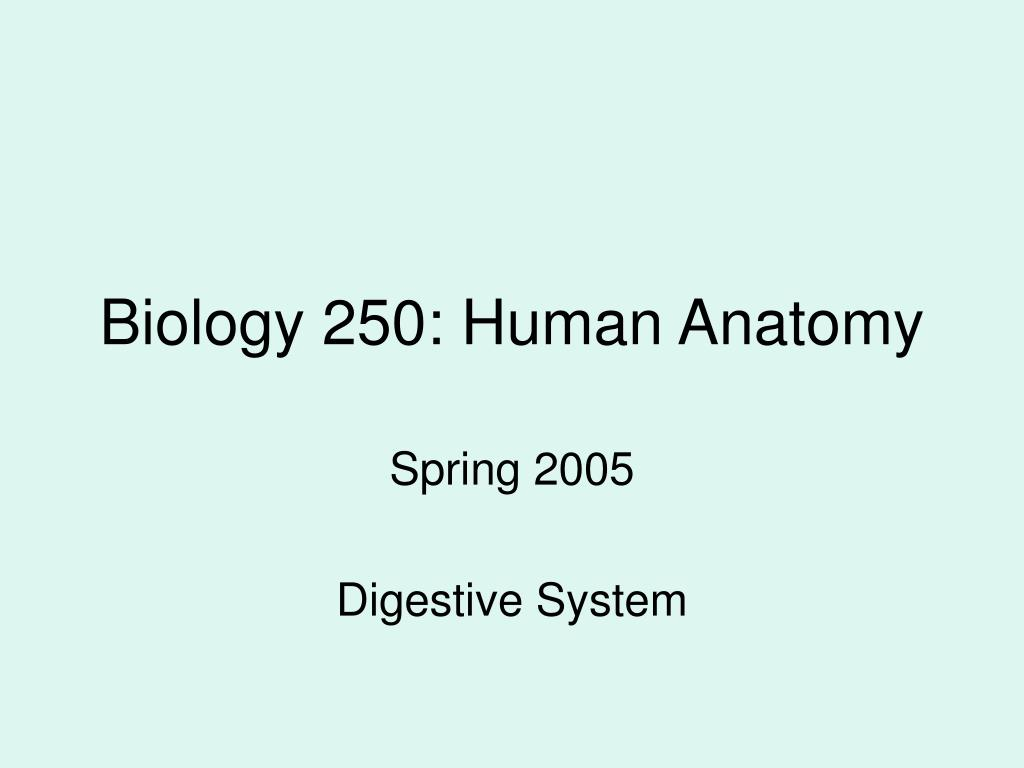 Biology 250: Human Anatomy