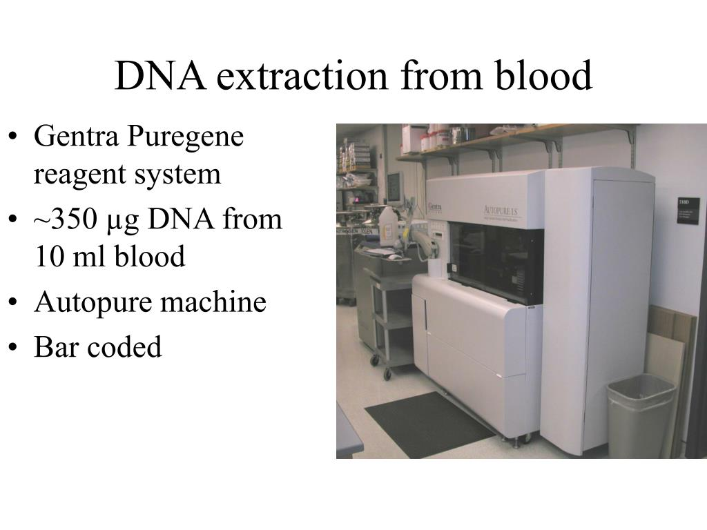 DNA extraction from blood