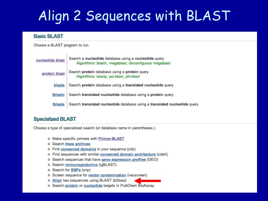 Align 2 Sequences with BLAST