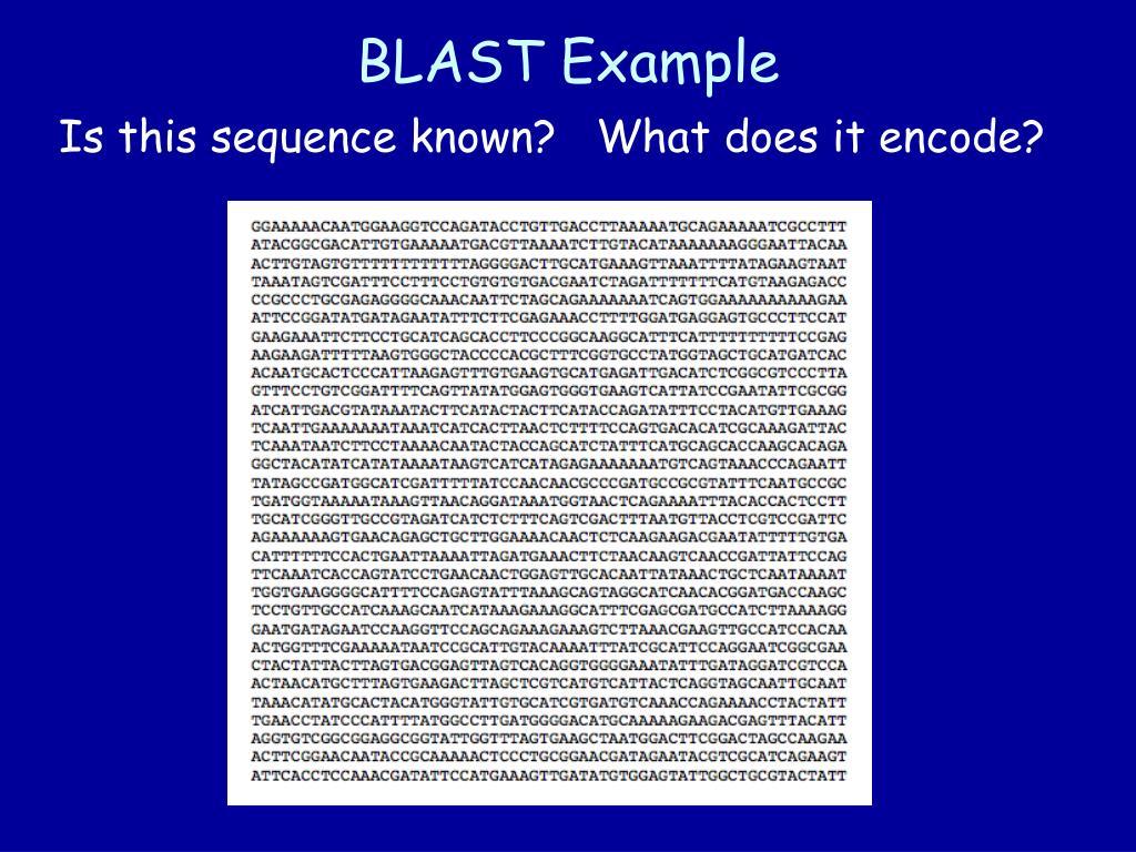 BLAST Example