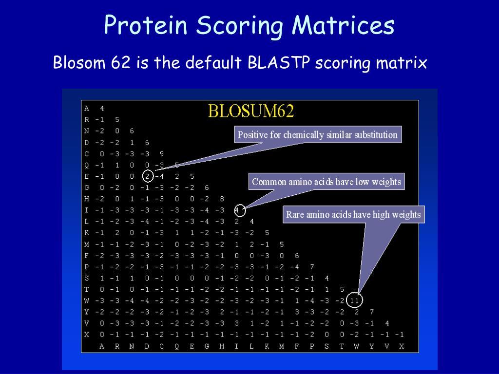 Protein Scoring Matrices