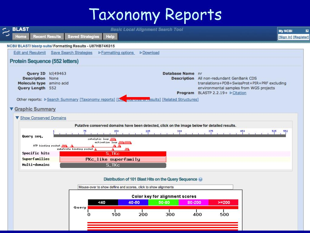 Taxonomy Reports