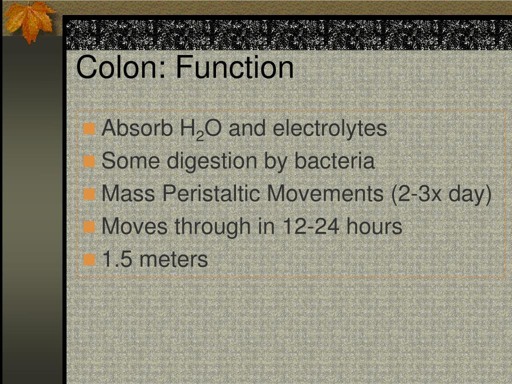 Colon: Function