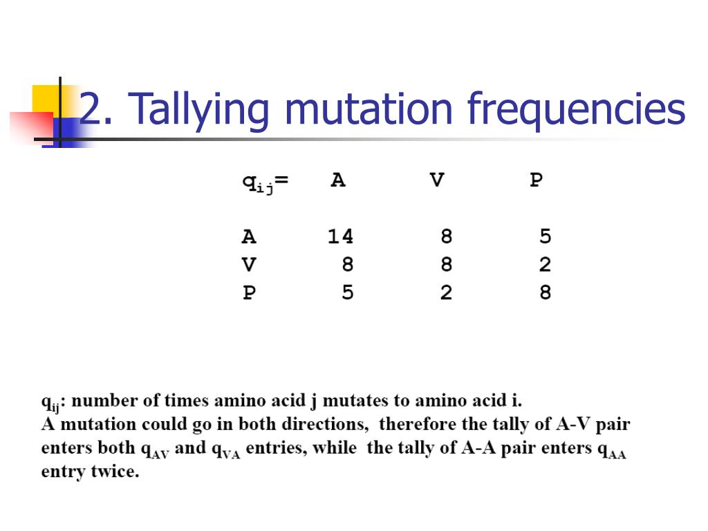 2. Tallying mutation frequencies