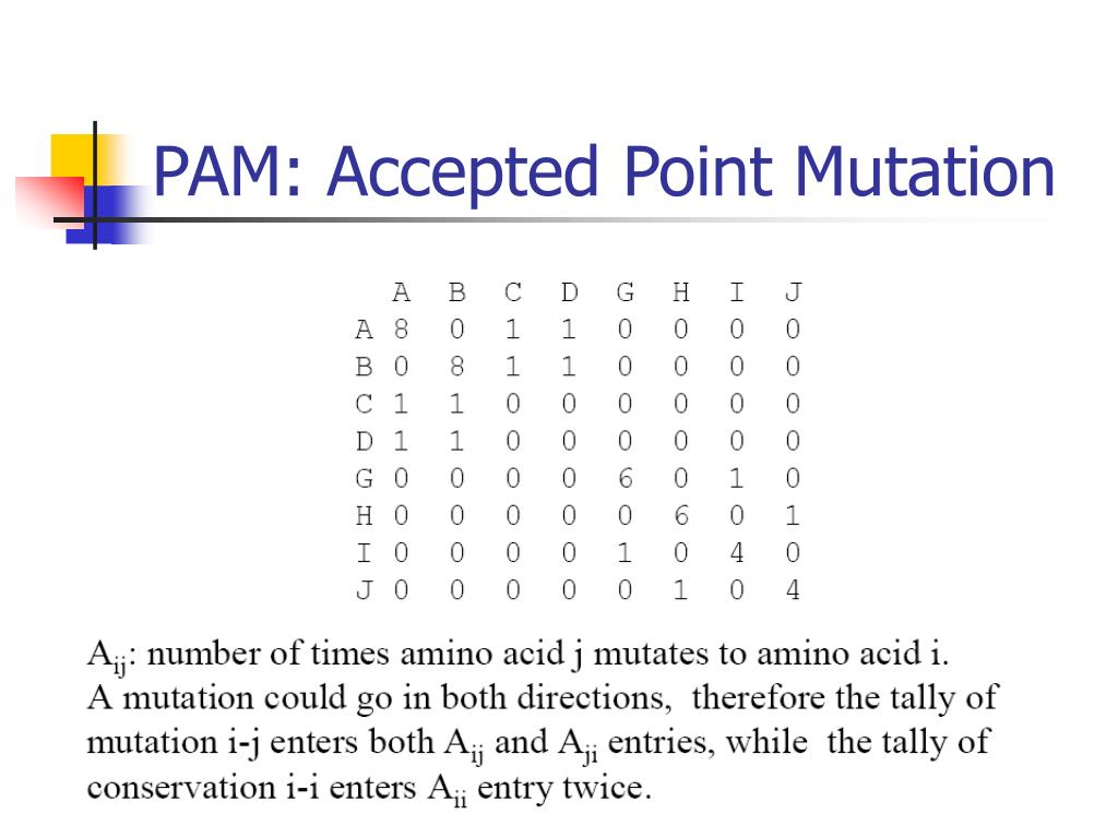 PAM: Accepted Point Mutation