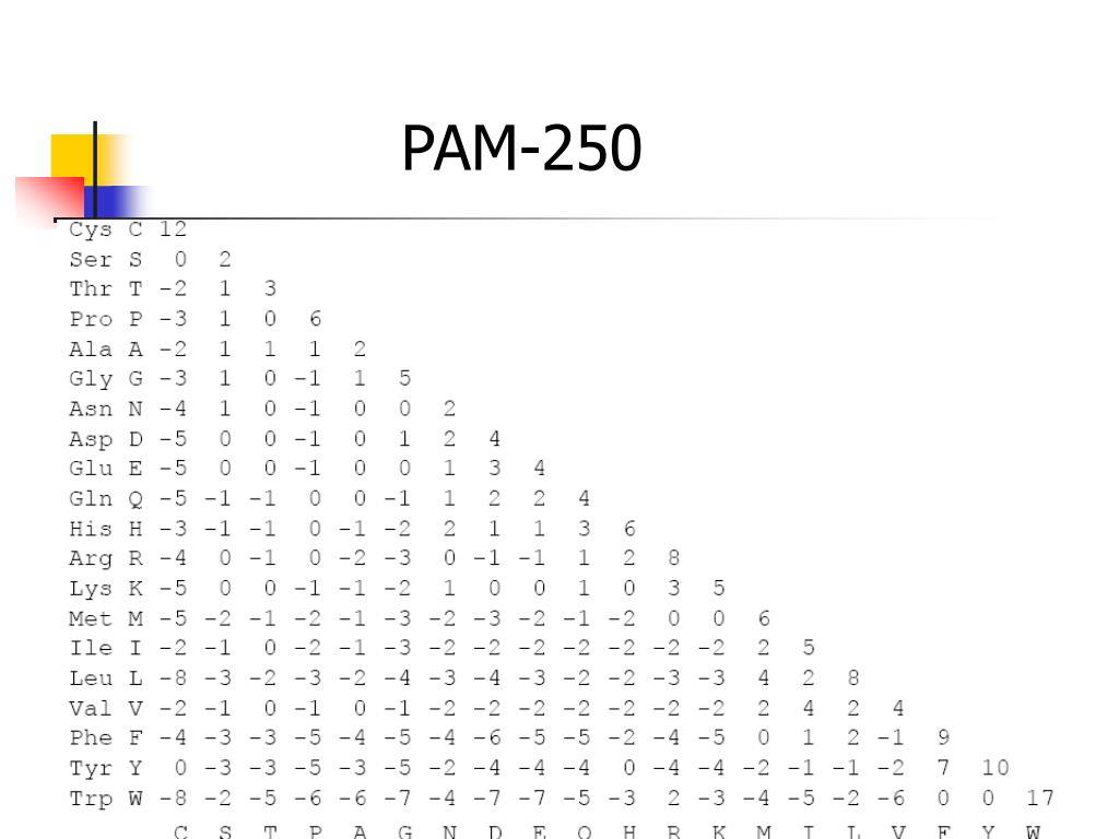 PAM-250