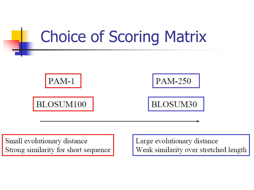 Choice of Scoring Matrix