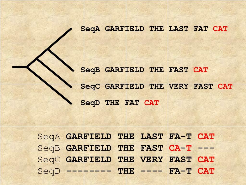 SeqA GARFIELD THE LAST FAT