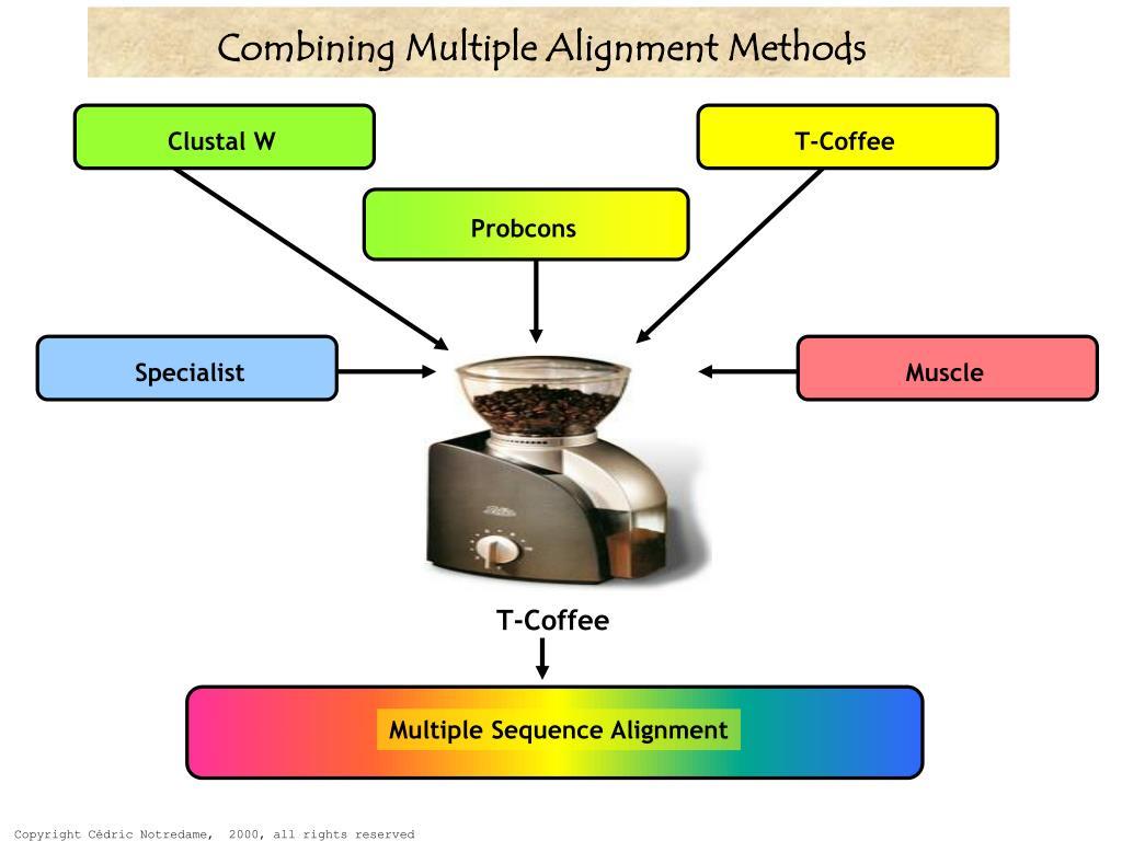 Combining Multiple Alignment Methods