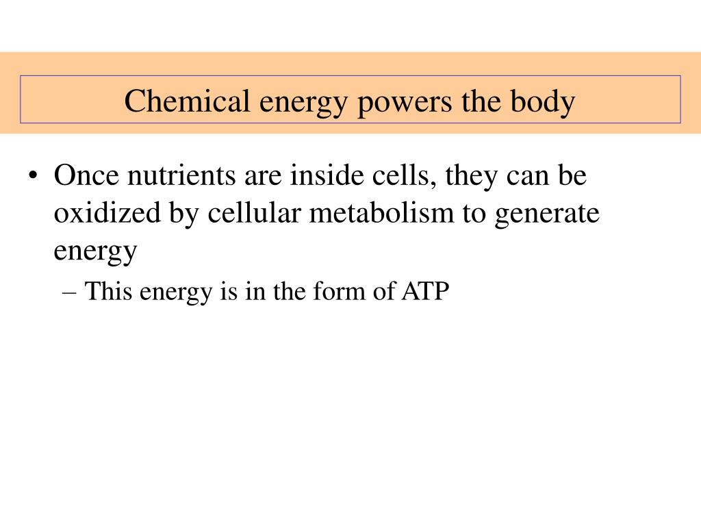 Chemical energy powers the body