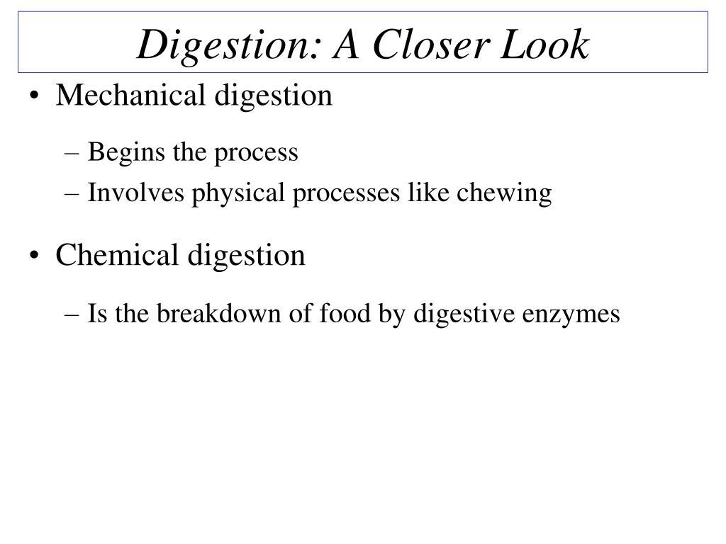 Digestion: A Closer Look
