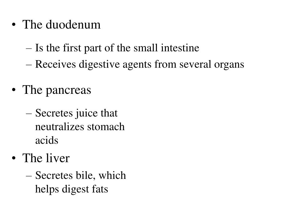 Is the first part of the small intestine