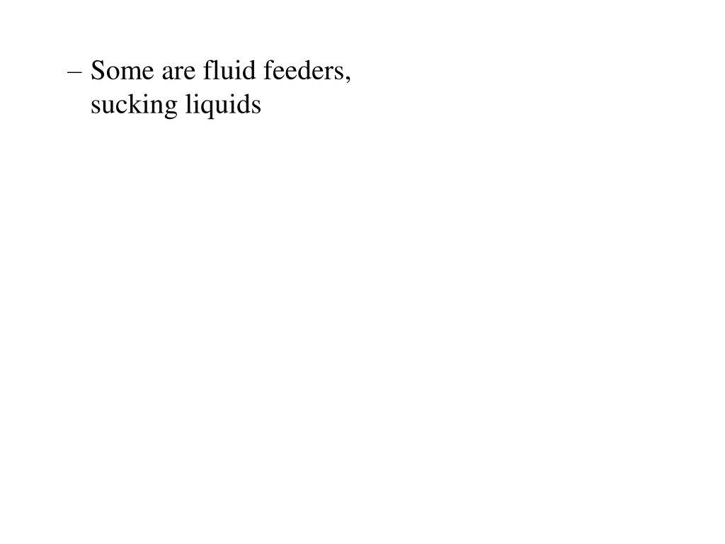Some are fluid feeders, sucking liquids