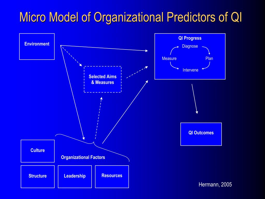 Micro Model of Organizational Predictors of QI