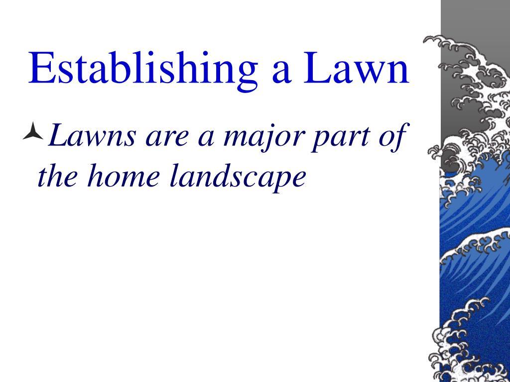 Establishing a Lawn