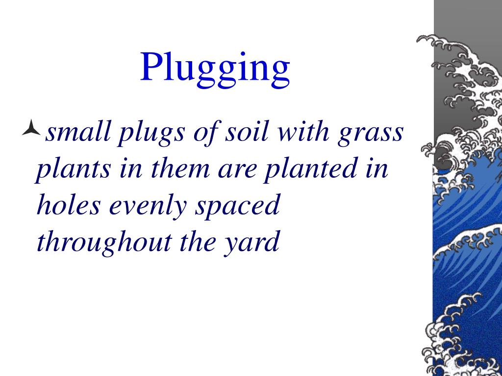Plugging