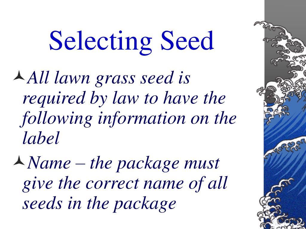 Selecting Seed