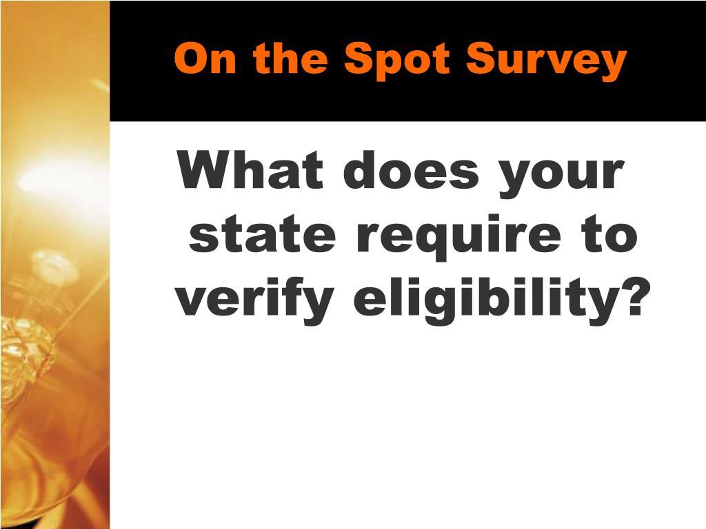On the Spot Survey