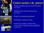 custos sociais e de g nero