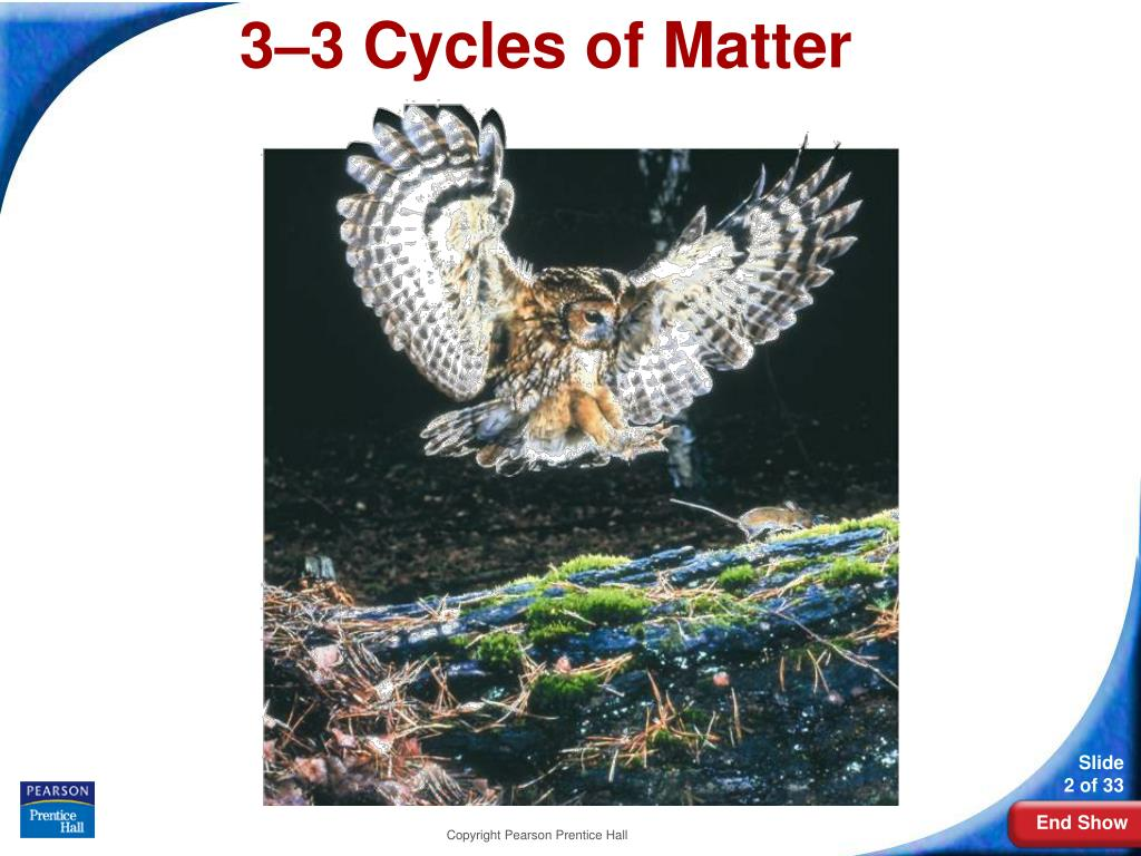 3–3Cycles of Matter