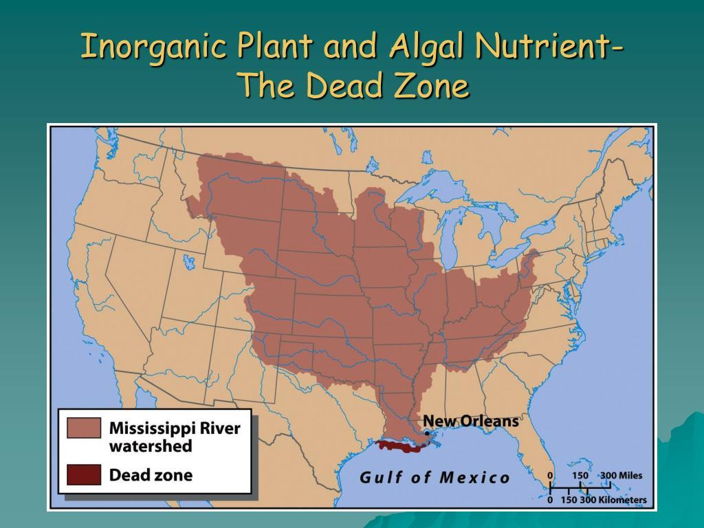 Inorganic Plant and Algal Nutrient-