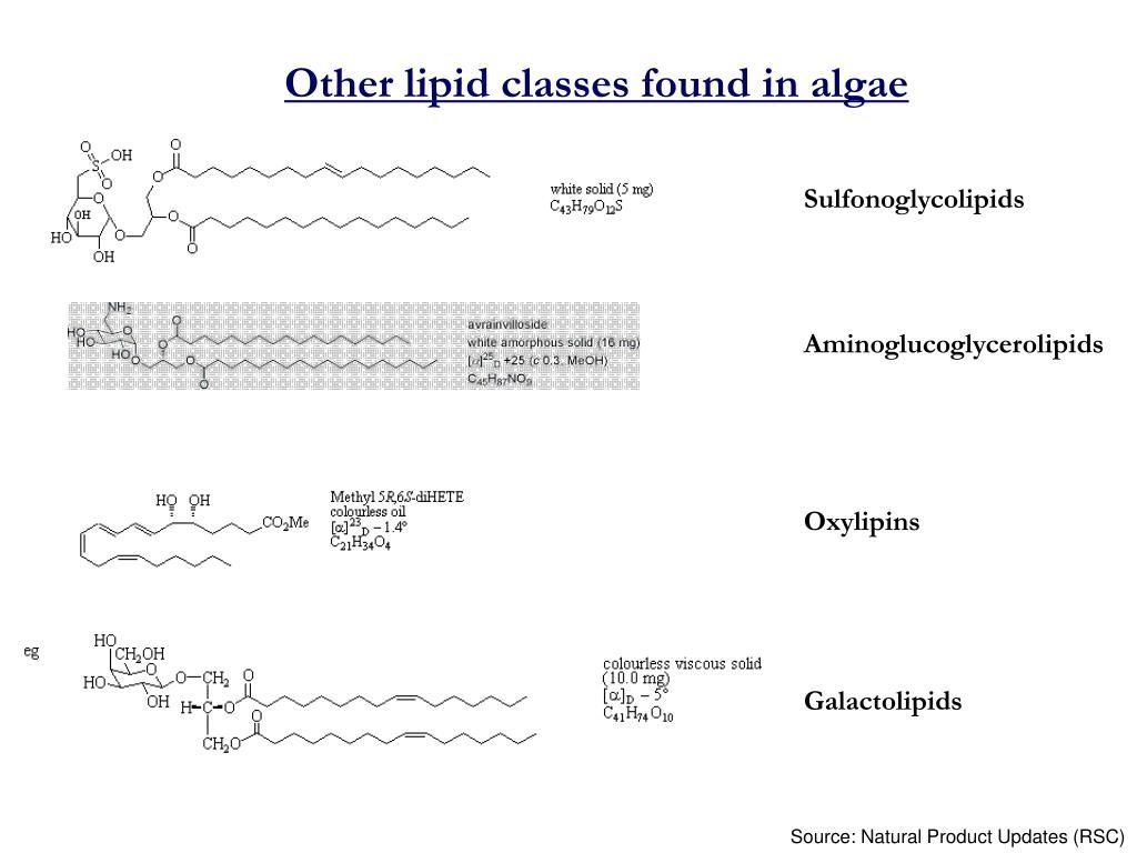 Other lipid classes found in algae