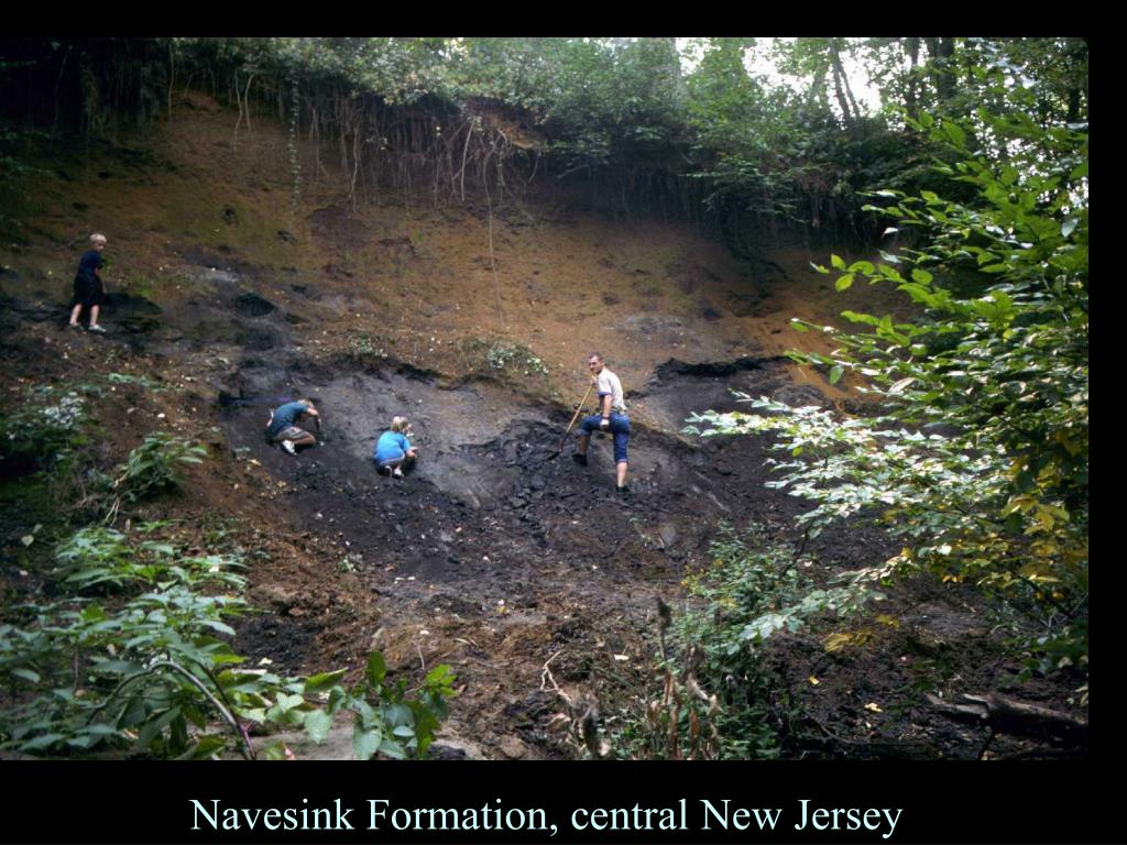Navesink Formation, central New Jersey