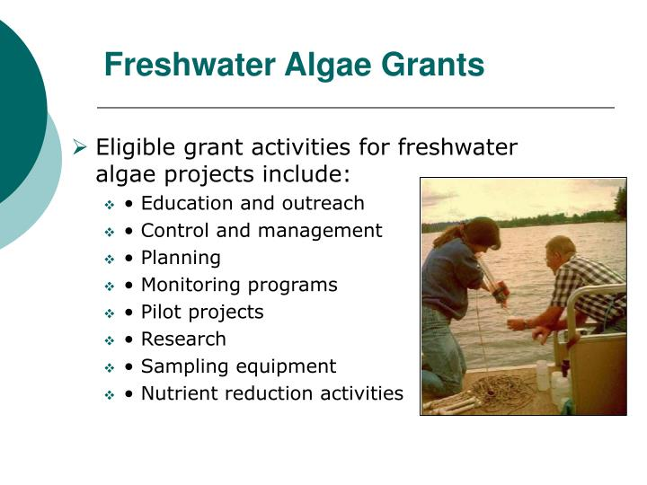 Freshwater Algae Grants