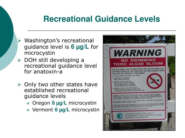Recreational Guidance Levels
