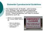 statewide cyanobacterial guidelines