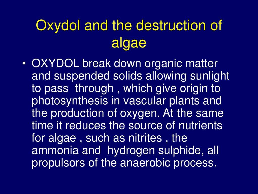 Oxydol and the destruction of algae
