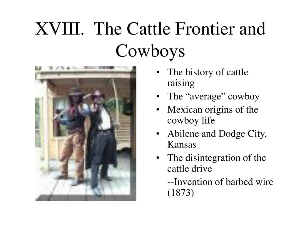 XVIII.  The Cattle Frontier and Cowboys