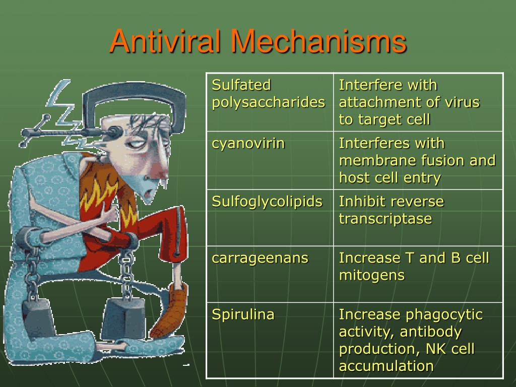 Antiviral Mechanisms