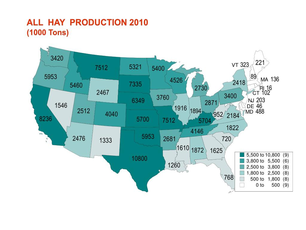 ALL  HAY  PRODUCTION 2010