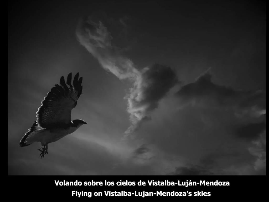 Volando sobre los cielos de Vistalba-Luján-Mendoza