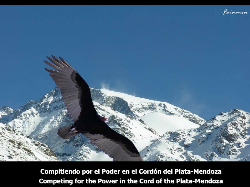 Compitiendo por el Poder en el Cordón del Plata-Mendoza